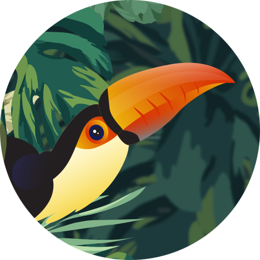 The Toucan Therapy